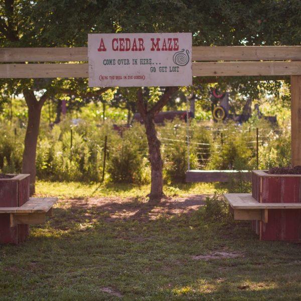 view of the cedar maze entrance