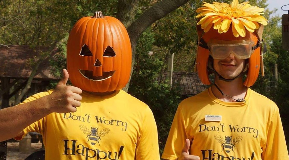 Two employees with pumpkins on their heads