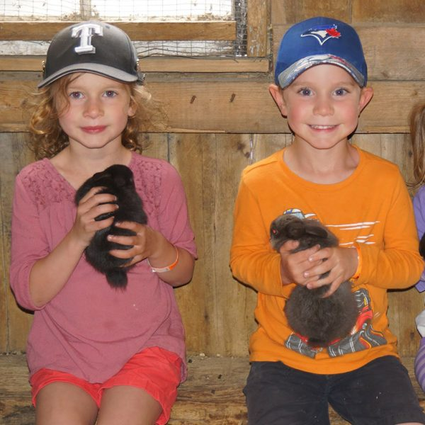 Two children holding bunnies