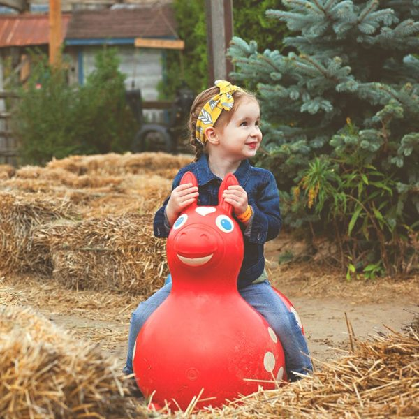 Girl on Bouncy Horse