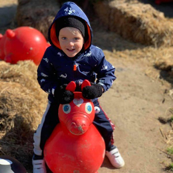 Boy sitting on the Bounce Animal