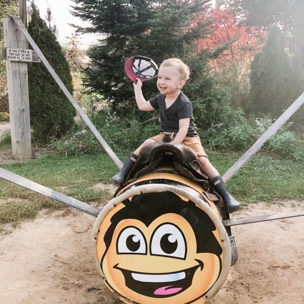 Little boy riding the Wild Bee