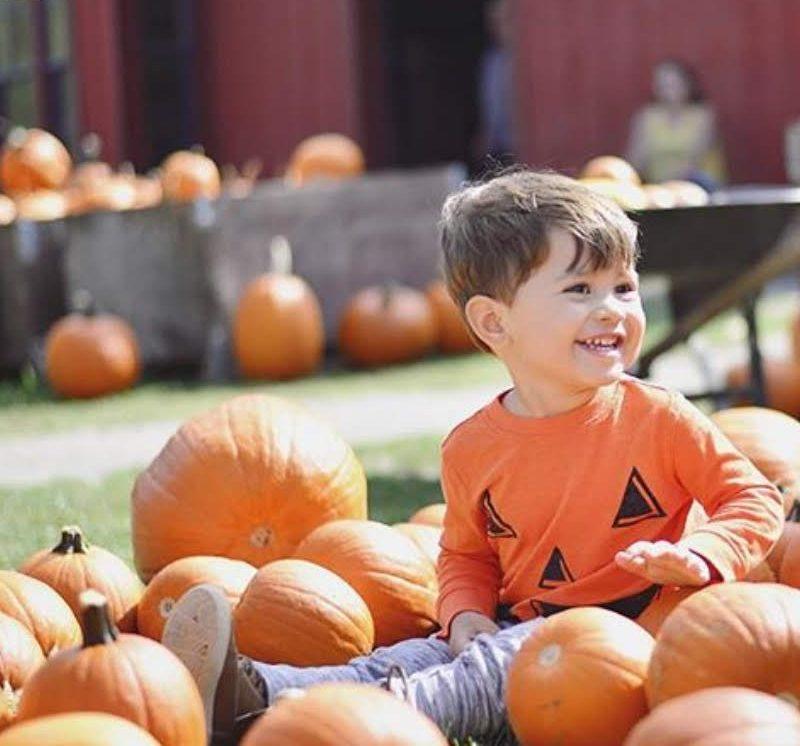 Boy sitting on pumpkins